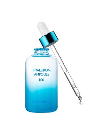 Ампула с гиалуроновой кислотой для лица SEANTREE Art Hyaluron Ampoule 100 - 100ml