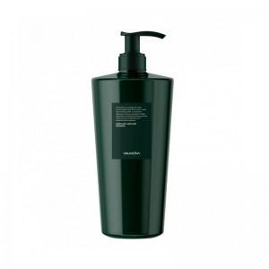 Шампунь против выпадения волос EVAS Valmona Earth Anti-Hair Loss Shampoo 500мл